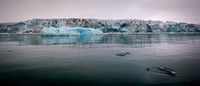5649 Ice Shelf and Blue Iceberg